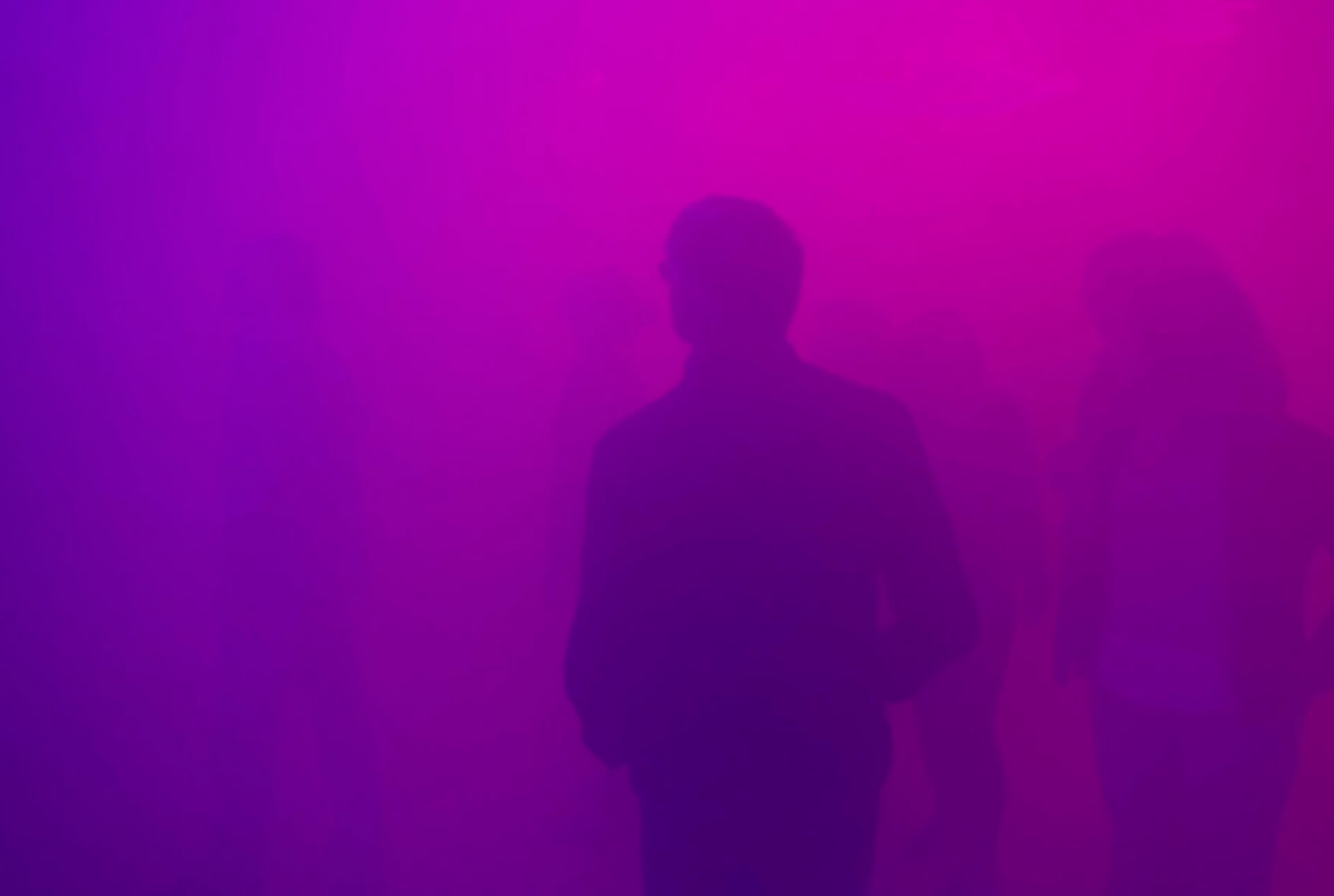 people emerged in colored fog